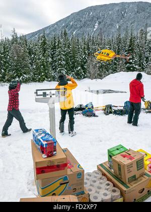 Les skieurs de l'arrière-pays de peser et d'élaborer des dispositions pour les transports par hélicoptère pour montage Banque D'Images