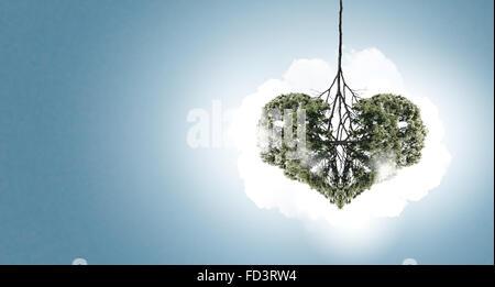 Image conceptuelle de l'arbre vert en forme de coeur Banque D'Images