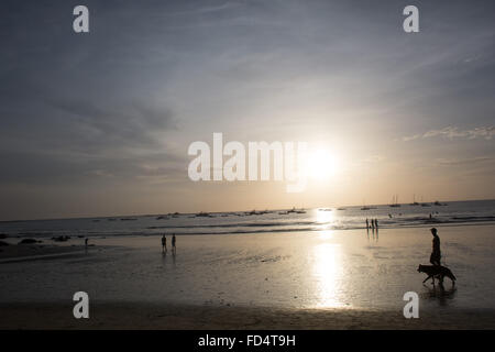 Silhouette Of Man Walking On Beach avec son chien Banque D'Images