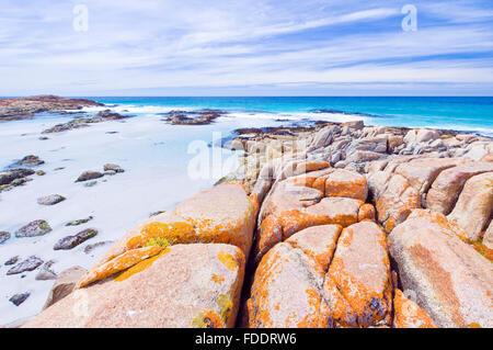 Les plages de la Péninsule de Freycinet en Tasmanie, montrant des roches couvertes de lichen orange