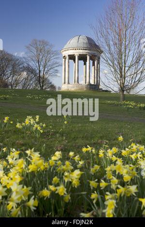 La rotonde construite en 1766, et des jonquilles dans le parc à Petworth House, West Sussex. La rotonde ionique peut avoir été conçu par Matthew Brettingham probablement inspiré par Vanbrugh's rotondes.