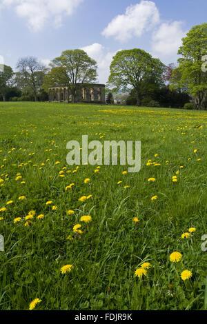 Vue sur une prairie de fleurs sauvages à l'Orangerie à The Green Lawns, Newcastle upon Tyne. George Bowes a hérité de la succession en 1722 et les motifs paysagers autour de Gibside Hall. Banque D'Images