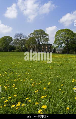 Vue sur une prairie de fleurs sauvages à l'Orangerie à The Green Lawns, Newcastle upon Tyne. George Bowes a hérité de la succession en 1722 et les motifs paysagers autour de Gibside Hall.