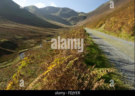 La route vers la mine, par Crag Coledale Beck, Borrowdale, Lake District, Cumbria.