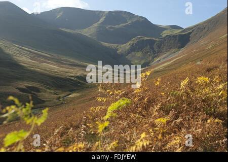 Vue vers vigueur Crag Mine, grâce à Coledale Beck, Borrowdale, Lake District, Cumbria.