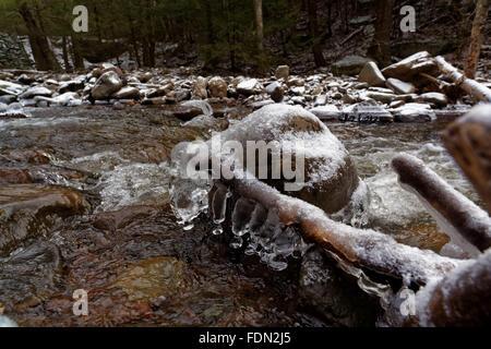 La glace se forme sur les rochers et les arbres comme le ruisseau gelé Scoharie flux à peine au cours d'un coup Banque D'Images