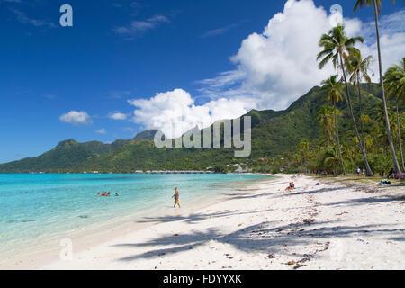 Plage de Temae, Moorea, îles de la société, Polynésie Française Banque D'Images