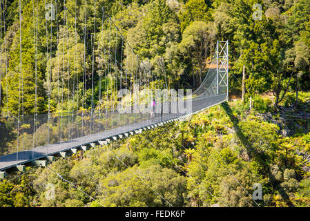 Vélo de montagne traversant le pont suspendu de Maramataha sur le sentier du Bois dans le Parc Forestier de Pureora Banque D'Images