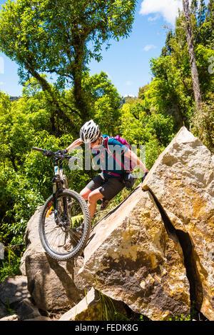 Mountain biker négocie un éboulement (depuis effacé) sur le sentier du Bois dans le Parc Forestier de Pureora Ile Banque D'Images