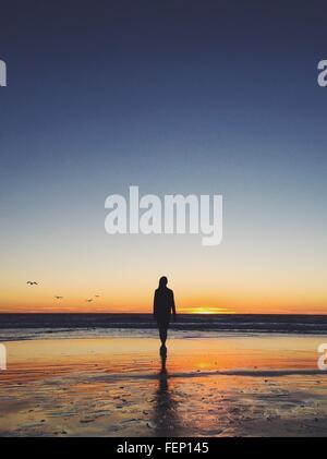 Rear View of Woman Walking On Beach pendant le coucher du soleil Banque D'Images