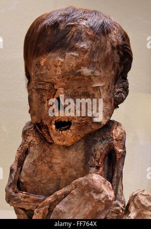 Hildesheim, Allemagne. Feb 11, 2016. La momie d'un enfant (sans doute entre 4 et 6 ans, autour de 1334 AD, Pérou) Banque D'Images