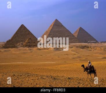 Les chameaux et pyramides, Gizeh plateau, Le Caire, Égypte, Afrique Banque D'Images