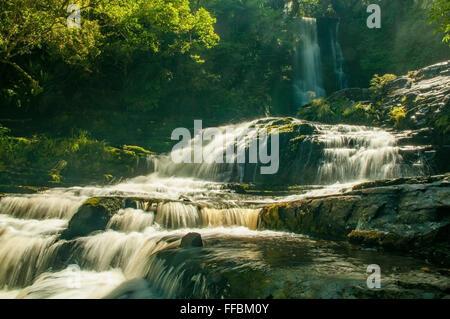 Purakaunui Falls, la Catlins, île du Sud, Nouvelle-Zélande