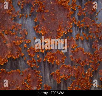 Rusty n'est pas oxydée texture de vieille plaque métallique Banque D'Images