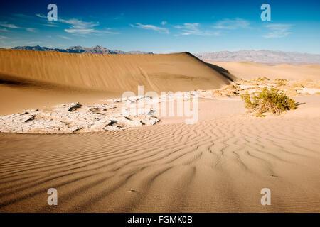 Télévision Mesquite Sand Dunes in Death Valley National Park, Californie