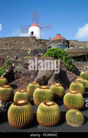 Jardin de cactus par artiste César Manrique, Lanzarote, zone San Juan Island, archipel des Canaries, l'Espagne, Banque D'Images