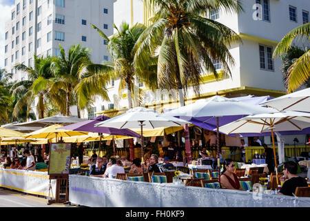 Floride, Sud, FL, Miami Beach, quartier art déco, Ocean Drive, jour de l'an, hôtels hôtels hôtels motels inn motel, hébergement, hôtels, Leslie, Cala