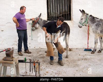 Clouage fers forgeron burro taxi âne typique village blanc, Mijas, Malaga province Costa del Sol. Le sud de l'andalousie Banque D'Images