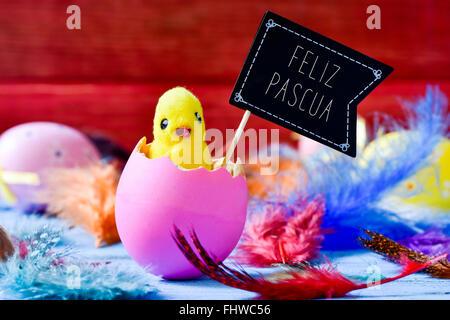 Libre d'un jouet qui sortent d'un poussin éclos l'oeuf rose entouré de plumes et d'une pancarte en forme de drapeau Banque D'Images