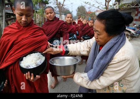 Les moines bouddhistes recevoir le riz de population, rituel quotidien, Nyaung-U, Myanmar
