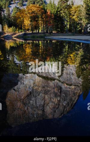 EL CAPITAN se reflète dans la Merced River dans la vallée de Yosemite en automne - Yosemite National Park, CALIFORINA