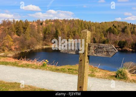 En bois ancien sentier public enseigne sur trajet autour de Tarn Hows SSSI dans Parc National de Lake District. Coniston, Cumbria, England, UK