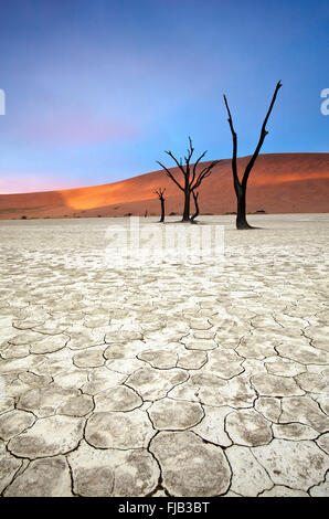 Deadvlei landscape Banque D'Images