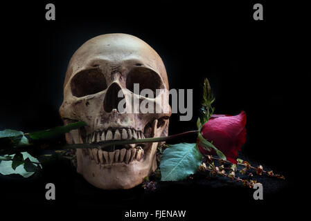 Nature morte au crâne humain avec rose rouge,et téléphone sur marbre noir Banque D'Images