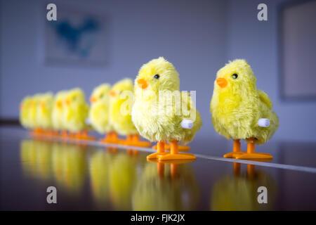 Un oisillon jouet. Concept: leadership, faire le premier pas, se démarquer de la foule. Banque D'Images