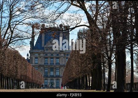 Jardin des Tuileries à Paris vue de bâtiment avec voie bordée d'arbres Banque D'Images