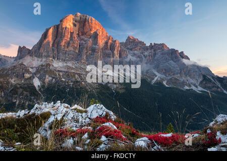 La première lumière sur Tofana de Rozes de Cinque Torri, Dolomites, province de Belluno, Veneto, Italie Banque D'Images