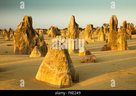 Les Pinnacles, des formations calcaires, le Parc National de Nambung, près de Cervantes, l'ouest de l'Australie Banque D'Images