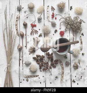 Thé, baies d'hiver, l'herbe, de graines et de plantes Banque D'Images