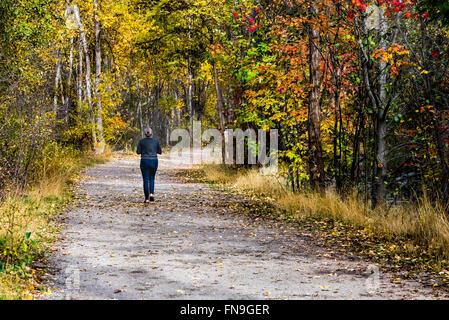 Woman jogging dans le parc, British Columbia, Canada Banque D'Images