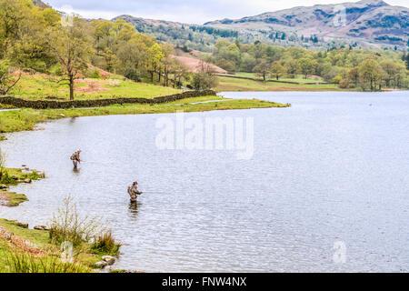 Lake District, Royaume-Uni - Mai 09, 2015: Deux pêcheurs debout dans l'eau et pêcher dans le lac District, UK Banque D'Images