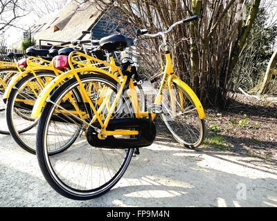AMSTERDAM, Pays-Bas - le 13 mars 2016: un service de location de vélos jaune garée dans le Vondelpark. Le système Banque D'Images