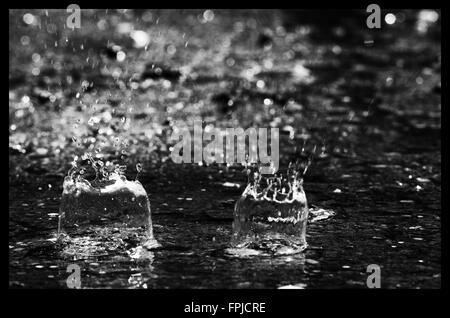 Gouttes de pluie dans une flaque Banque D'Images