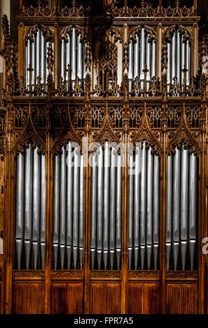 Tuyaux d'orgue à la Cathédrale Saint-Patrick, New York City, USA.