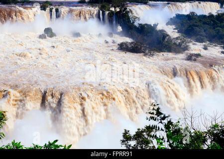 Les chutes d'Iguazu à la frontière du Brésil et de l'Argentine, en Amérique du Sud Banque D'Images