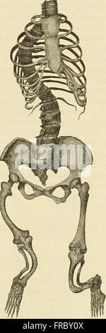 La pratique de la médecine; un texte-livre pour les praticiens et les étudiants, en particulier pour le diagnostic et le traitement (1913)