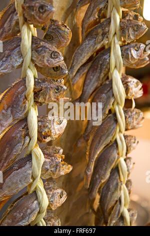 Le poisson séché à la vente sur le marché de Gwangjang à Séoul Banque D'Images
