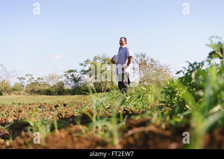 L'agriculture et cultures d'Amérique latine. Middle aged hispanic farmer standing fier dans le champ de tomates, Banque D'Images
