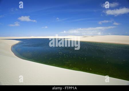Paysage de dunes et de l'étang dans le Parc National Lencois Maranhenses Banque D'Images