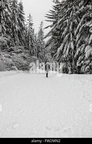 jours neigeux