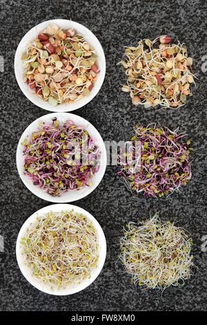 Graines de germination et de haricots dans la porcelaine sélection bols et lâche sur en arrière-plan. Banque D'Images