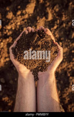 Le sol des terres arables dans les mains d'un agriculteur responsable, homme caucasian farmer holding pile du sol, Banque D'Images