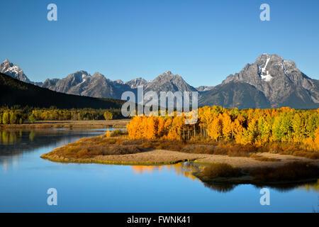 WYOMING - Tôt le matin, la lumière du soleil sur le Tetons et trembles dans la couleur de l'automne de l'Oxbow Bend Banque D'Images