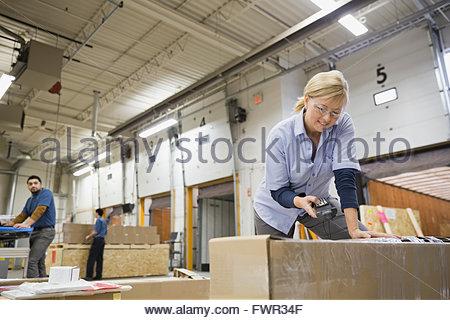 La numérisation dans l'entrepôt paquet femelle Banque D'Images