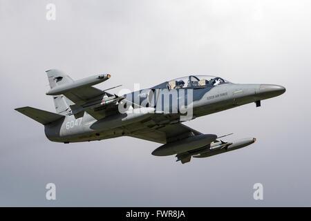 L'Armée de l'air tchèque Aero L-159T ALCA (Advanced Light en avions de combat) Banque D'Images