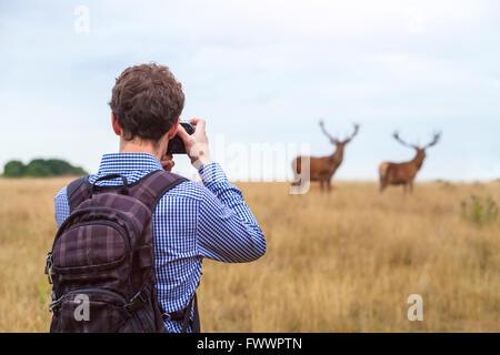 Photo photographe de la faune, l'homme avec l'appareil photo et deux chevreuils dans la nature Banque D'Images